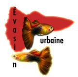 evasion_urbaine